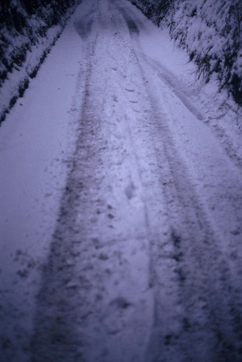 Road_towards_newgate_cottage_in_the_snow
